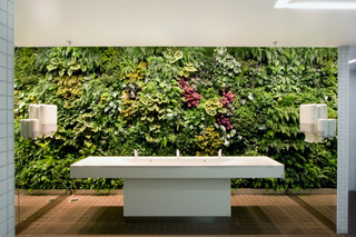 Indoor Wall, Stockholm International Fairs  by  Vertical Garden Design