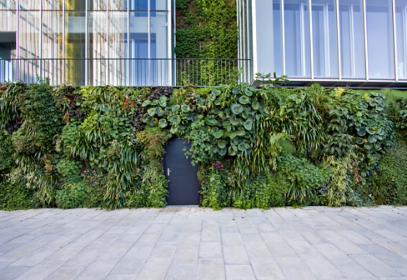 Outdoor wall natura towers by vertical garden design for Exterior garden design
