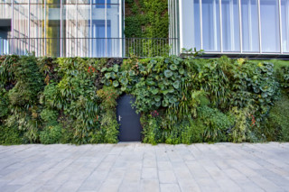 Outdoor Wall, Natura Towers  by  Vertical Garden Design