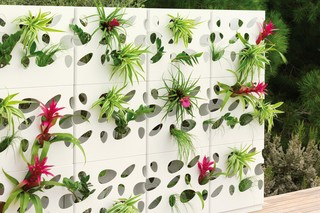 Urban Garden Wall  by  VITEO