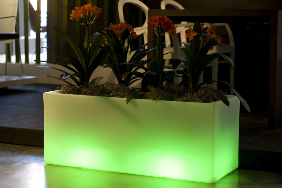 Jardinera Llum