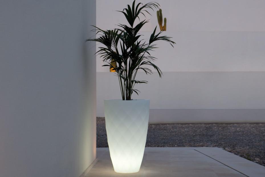 Vases Pot