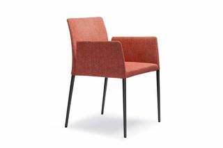 Deen chair  by  Walter Knoll