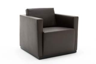 Elton armchair  by  Walter Knoll