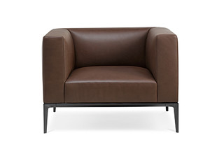 Jaan Armchair  by  Walter Knoll