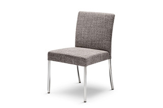 Jason chair  by  Walter Knoll