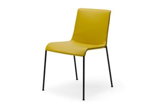 Liz chair  by  Walter Knoll