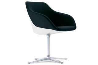 Turtle chair  by  Walter Knoll
