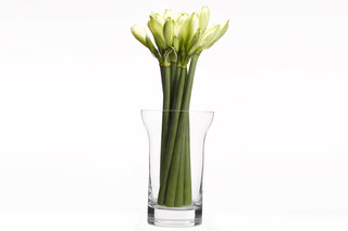 Table Ware - Vase  by  When Objects Work