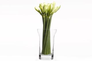 Table Ware - Vase  von  When Objects Work
