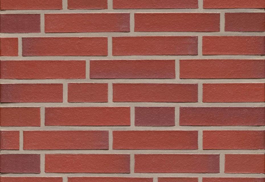 Bockhorn red