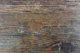 DESIGNline® Prestige original Tabacco  by  Windmöller Flooring