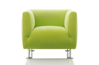 Ardea armchair  by  Wittmann