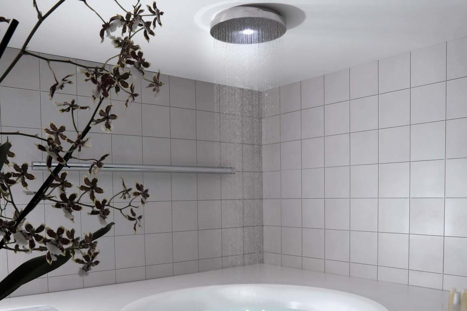 Shower Head 94197
